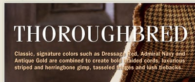 Thoroughbred on paint colors